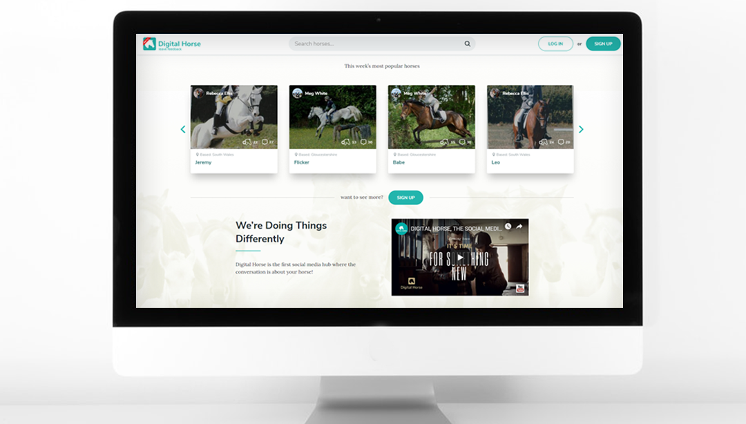 Digital Horse minimalism style website