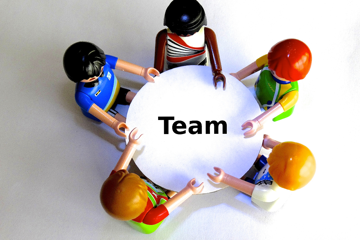 Team organisation and benefits from knowledge networks